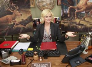 Amy-Poehler-is-in-a-Pawnee-state-of-mind-6IETPTS-x-large
