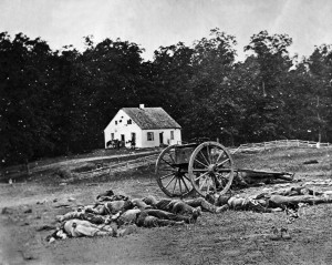 Civil War Dead on Antietam Battlefield